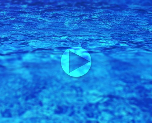 AdobeStock_22096221-d-video